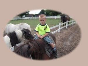 Ovalt udsnit med Noah til hest