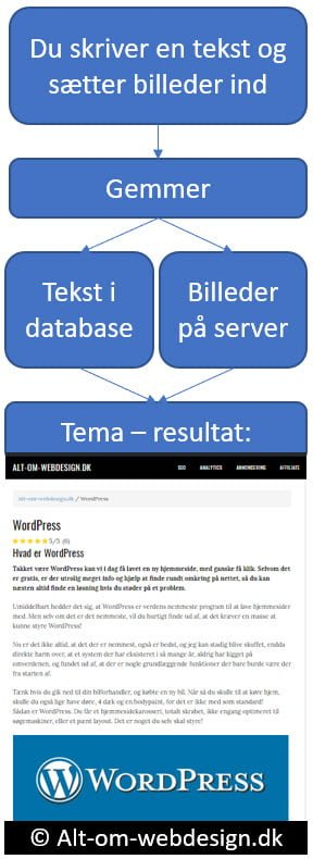 Skriv og gem i WordPress